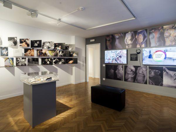 Exposición Atelier